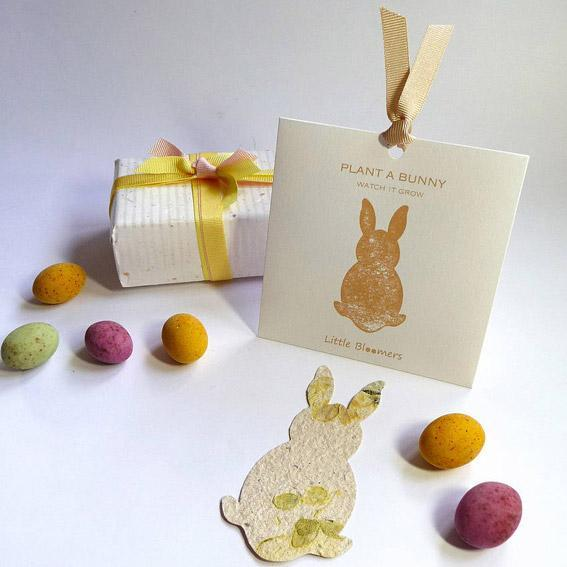 'Plant A Bunny' Seed Paper