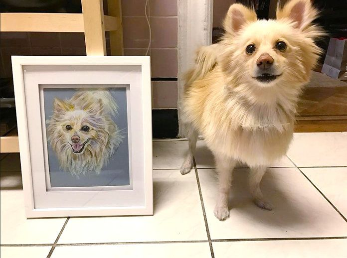 А Custom Pet Portrait