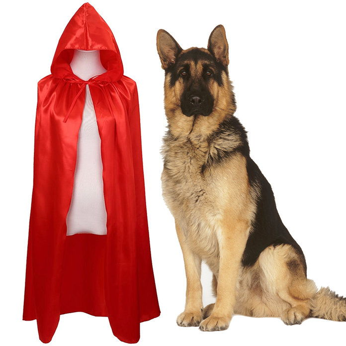 قليل Red Riding Hood and a Wolf